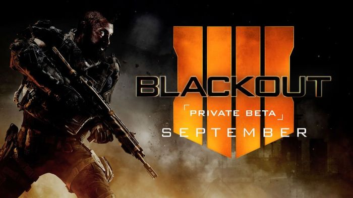 call-of-duty-black-ops-4-blackout_beta.jpg